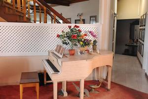 Baby Grand Piano...Click Here For Details
