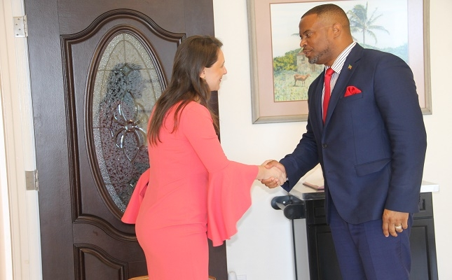 SKNVibes | Kosovo and St  Kitts and Nevis have building